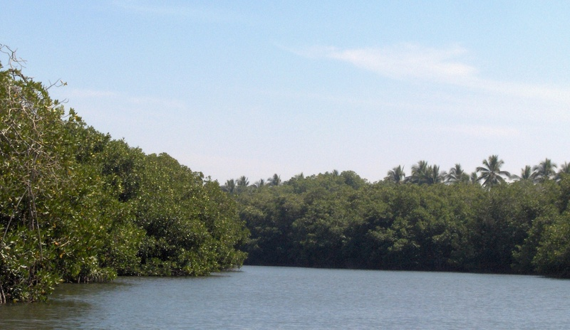 Lagoon at Barra de Potosi